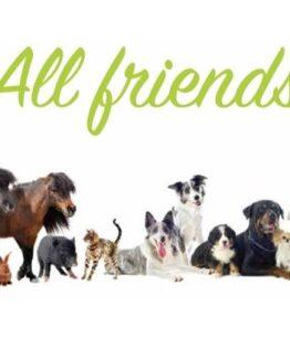 ALL FRIENDS HYGIENE PRODUKTER